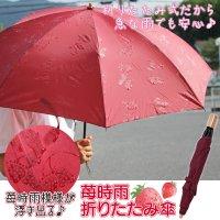 苺時雨折りたたみ傘