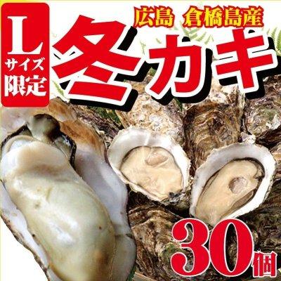 画像1: 広島県産 カキ 1kg(Lサイズ約30個入り)倉橋島
