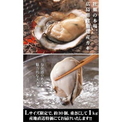 画像3: 広島県産 カキ 1kg(Lサイズ約30個入り)倉橋島